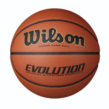 Picture of Wilson Evolution Game Ball