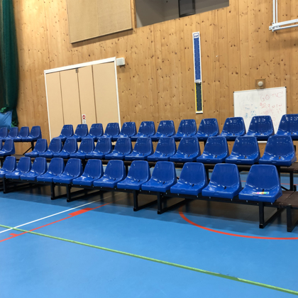 Picture of S101 Bleacher Seating for up to 12 people